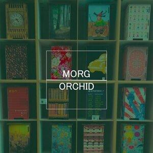Morg 歌手頭像