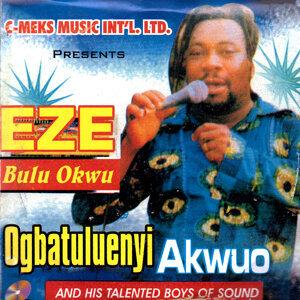Ogbatuluenyi Akwuo 歌手頭像