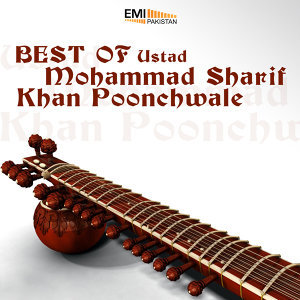Ustad Mohammad Sharif Khan Poonchwale アーティスト写真