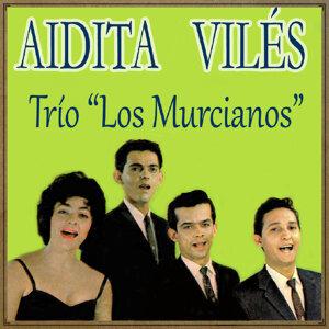 Aidita Avilés Y Trio Los Murcianos 歌手頭像