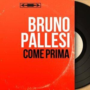 Bruno Pallesi アーティスト写真