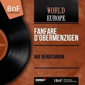 Fanfare d'Obermenzigen アーティスト写真