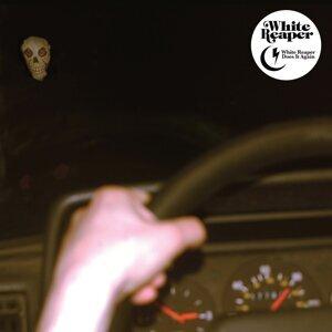 White Reaper 歌手頭像