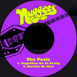 The Peels 歌手頭像