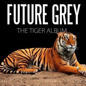 Future Grey 歌手頭像