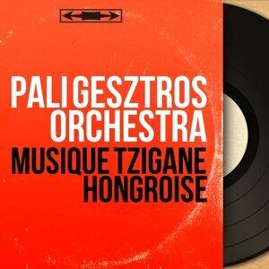 Pali Gesztros Orchestra 歌手頭像
