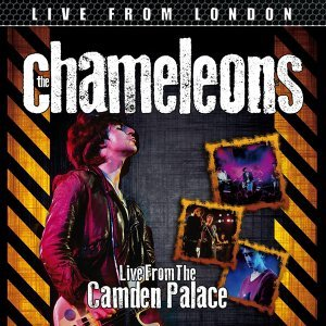 The Chameleons 歌手頭像