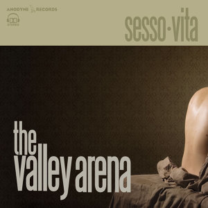 The Valley Arena
