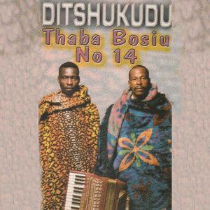 Ditshukudu 歌手頭像