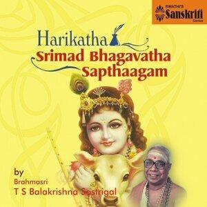 Brahmasri T. S. Balakrishna Sastrigal アーティスト写真
