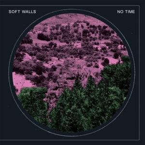 Soft Walls 歌手頭像