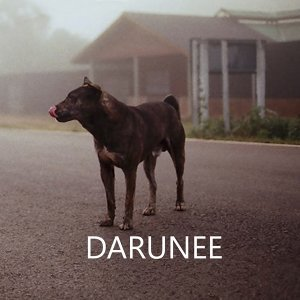 Darunee 歌手頭像