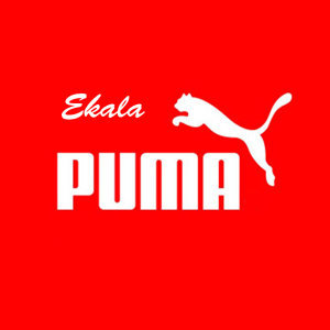 Ekala 歌手頭像