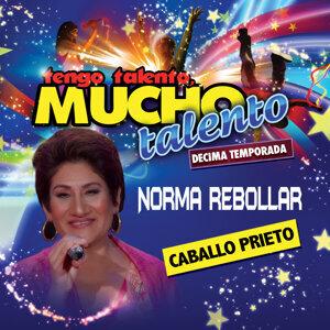 Norma Rebollar 歌手頭像