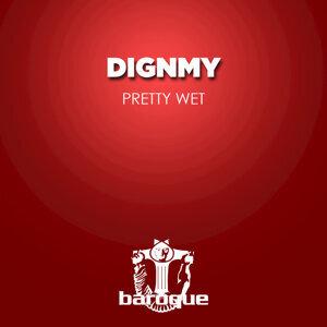 Dignmy 歌手頭像