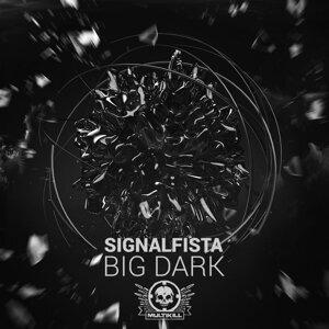 Signalfista 歌手頭像