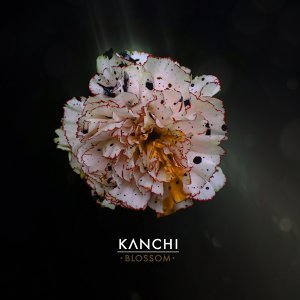 Kanchi