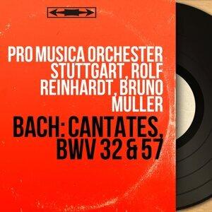 Pro Musica Orchester Stuttgart, Rolf Reinhardt, Bruno Muller 歌手頭像