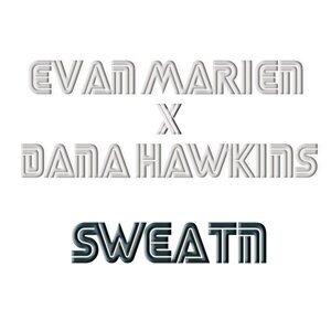 Dana Hawkins 歌手頭像