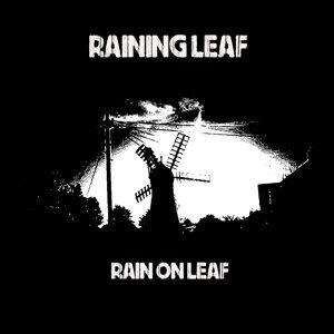 Raining Leaf アーティスト写真