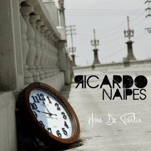 Ricardo Naipes 歌手頭像
