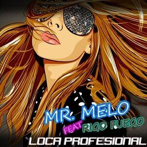 Mr. Melo アーティスト写真