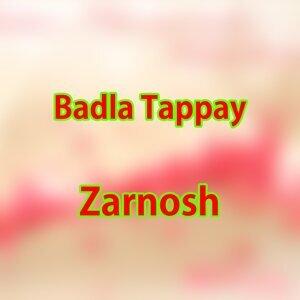 Zarnosh 歌手頭像