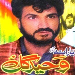 Wahid Gul 歌手頭像