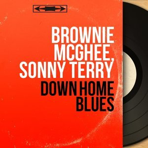 Brownie McGhee, Sonny Terry 歌手頭像