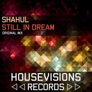 Shahul 歌手頭像