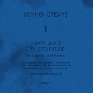 Common Dreams 歌手頭像