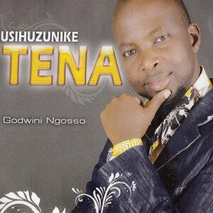 Godwini Ngosso 歌手頭像