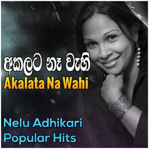 Nelu Adhikari 歌手頭像
