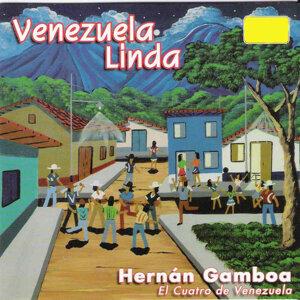 """Hernán Gamboa """"El Cuatro de Venezuela"""" アーティスト写真"""