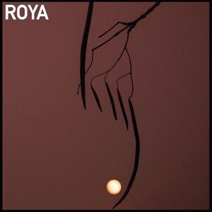 Roya 歌手頭像