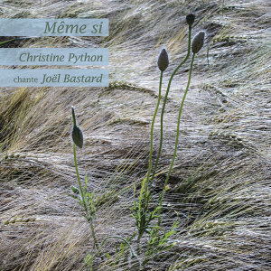 Christine Python アーティスト写真