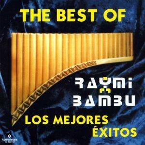 Raymi Bambú アーティスト写真
