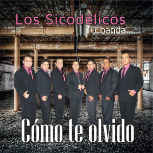 Los Sicodelicos アーティスト写真