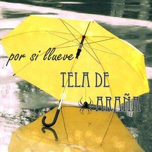 Tela De Araña 歌手頭像