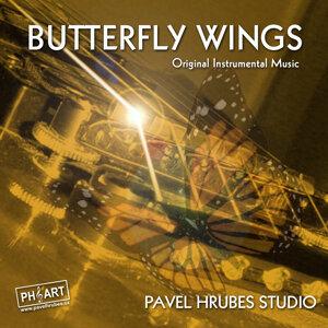Pavel Hrubes Studio 歌手頭像