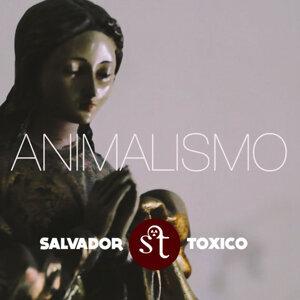 Salvador Tóxico 歌手頭像