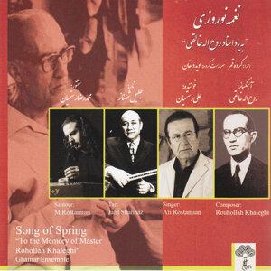 Ali Rostamian