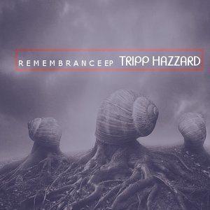 Tripp Hazzard 歌手頭像