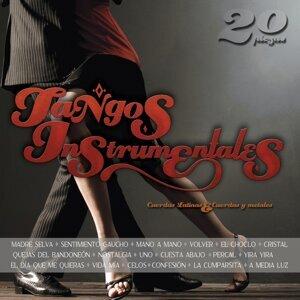 Cuerdas Latinas | Cuerdas y Metales 歌手頭像