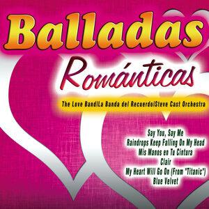 The Love Band|La Banda del Recuerdo|Steve Cast Orchestra アーティスト写真