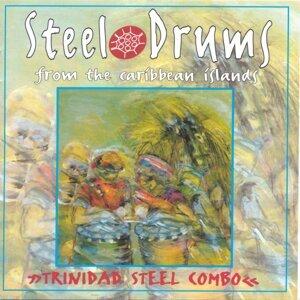 Trinidad Steel Combo