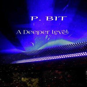 P Bit 歌手頭像