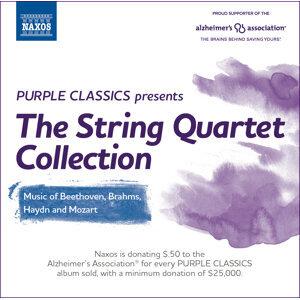 Eder Quartet 歌手頭像