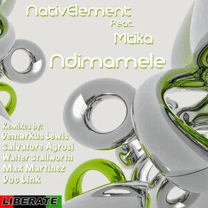 Nativ Elements 歌手頭像