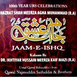 Qawal Najmuddin Saifuddin And Brothers 歌手頭像